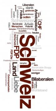 FDP Wahlen 2011